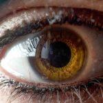Análise da Evolução da Densidade Óptica do Pigmento macular com a Idade